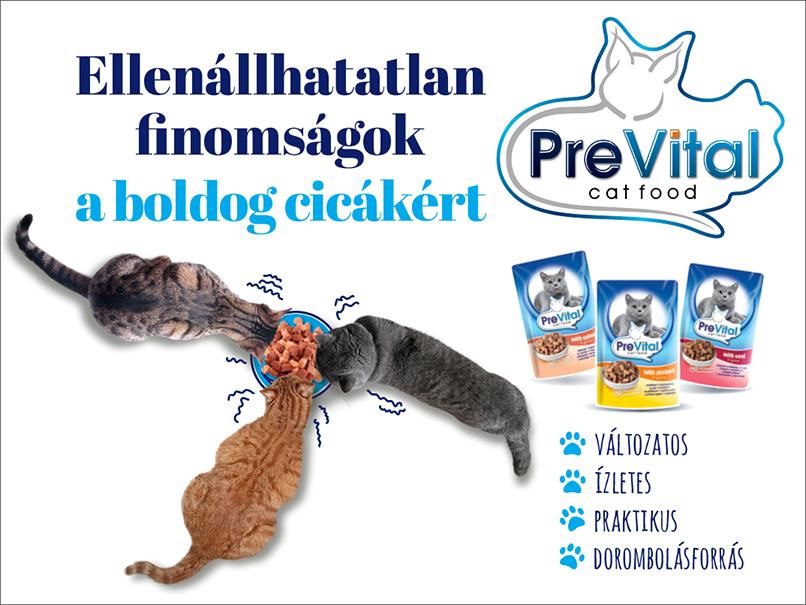 prevital02.jpg